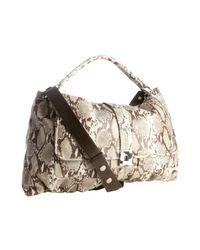 Kooba | Brown Python Embossed Leather Anika Shoulder Bag | Lyst