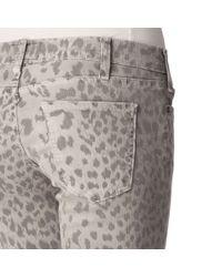 Current/Elliott Gray Leopard Print Skinny Jeans