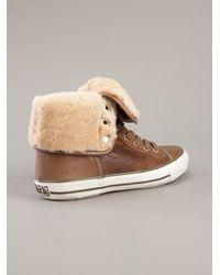 Ash Brown Vanna Aviator Sneaker : Tan