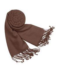 FORZIERI - Brown Solid Pashmina & Silk Fringed Shawl - Lyst