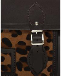 Cambridge Satchel Company Brown Leopard Pony Skin Pocket Satchel
