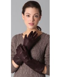 Club Monaco - Purple Catherine Long Gloves - Lyst