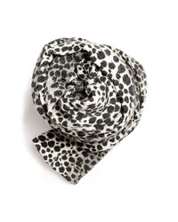 Mango | Black Animal Print Scarf | Lyst