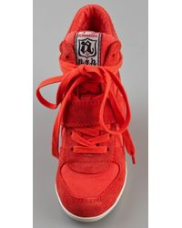 Ash - Red Bowie Suede Lace Up Wedge Sneakers - Lyst