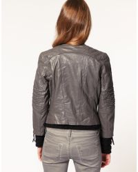 ASOS Collection | Black Asos Collarless Quilted Leather Biker with Ribbed Sleeve | Lyst
