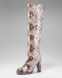 Stuart Weitzman | Brown Snake-print Knee Boot | Lyst
