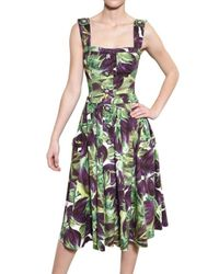 Dolce & Gabbana | Multicolor Floral Print Dress | Lyst