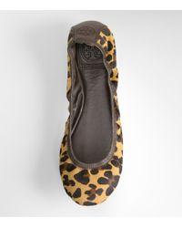 Tory Burch - Multicolor Leopard Eddie Ballet Flat - Lyst