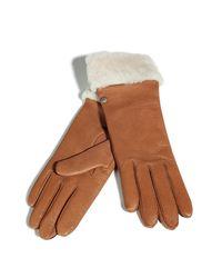 UGG | Brown Chestnut Long Cuff Gloves | Lyst