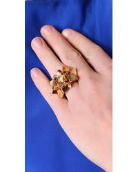 CC SKYE Metallic Fools Gold Ring