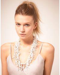 ASOS Collection - Multicolor Asos Seedbead Tassle Long Necklace - Lyst