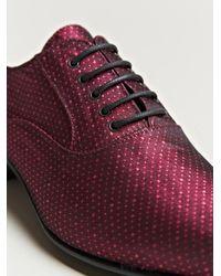 Haider Ackermann Purple Womens Babouche Style Oxford Shoes