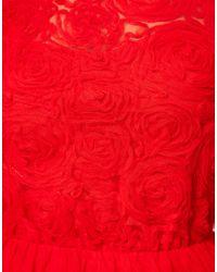 ASOS Natural Asos Skater Dress with Rose Mesh