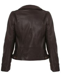 Minuet Petite Brown Dark Chocolate Bardot Neck Leather Jacket