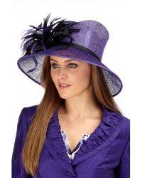 Precis Petite Purple Blackberry Brim Hat