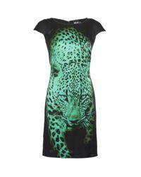 Just Cavalli | Black Tiger Print Dress | Lyst
