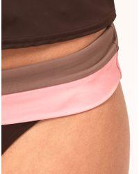 Freya Brown Freya Samba Fold Over Bikini Bottom