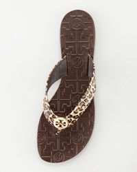 Tory Burch Multicolor Thora Leopard-print Thong Sandal