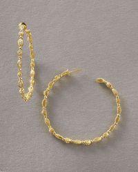 Doris Panos | Metallic Daphne Hoop Earrings | Lyst