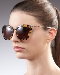 Miu Miu | Brown Catwalk Havana Sunglasses | Lyst