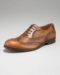 Ferragamo | Brown Belvedere Brogue Oxford for Men | Lyst