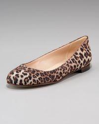 Manolo Blahnik | Natural Glittered Leopard-print Flat | Lyst