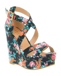 Office Wild West Wedge Blue Floral