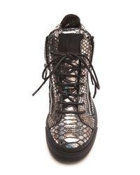 Giuseppe Zanotti   Silver Metallic Snake Embossed Sneakers   Lyst