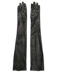 Lanvin   Black Nappa Leather Long Gloves   Lyst
