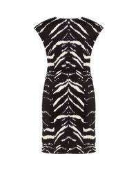 MICHAEL Michael Kors Multicolor Zebra Dress