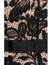 Temperley London | Black Lace Dress | Lyst