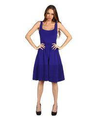 kate spade new york Blue Constance Sweater Dress
