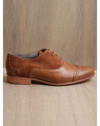 Folk Brown Folk Shoes Womens Lila Ambra Shoe for men