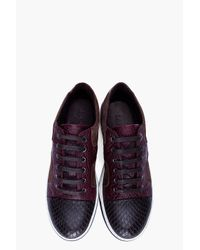 Lanvin Black Purple Leather Sneakers for men