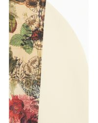 Preen By Thornton Bregazzi   Pink Rose Colorblock Cottonblend Dress   Lyst