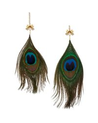 Betsey Johnson - Green Gold Tone Peacock Feather Mismatch Drop Earrings - Lyst