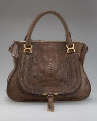 Chloé | Brown Marcie Python Bag | Lyst