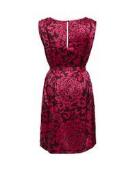 Temperley London | Pink Dianthus Shift Dress | Lyst