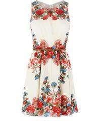 Oasis White Placement Floral Cotton Dress