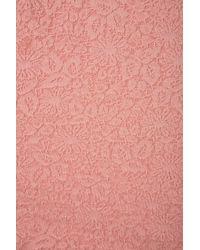 TOPSHOP Pink Lace Collar Top