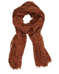 Oasis Brown Horse Shoe Print Scarf