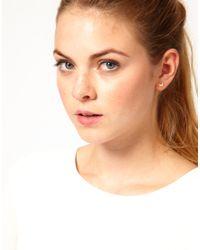 Dogeared | Metallic Cute Butterfly Stud Earrings | Lyst
