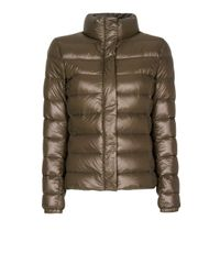 Mango Green Feather Quilted Anorak
