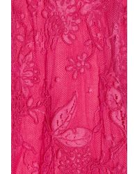 Issa | Pink Halterneck Lace Dress | Lyst