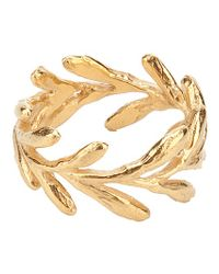 Catherine Weitzman | Metallic Gold Aloe Ring | Lyst