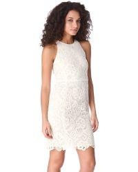 Rebecca Taylor - Natural Sleeveless Lace Dress - Lyst