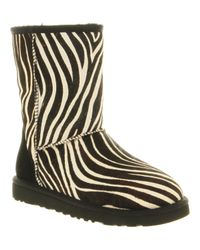 UGG | Multicolor Classic Short Boot Zebra Suede | Lyst