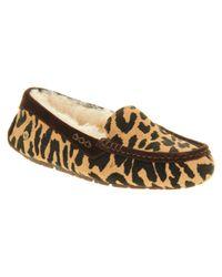 UGG Multicolor Ansley Exotic Cheetah Suede