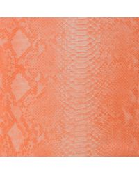 Stella McCartney Orange Python Print Cashmere Silk and Wool Blend Scarf