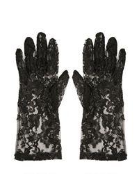 Dolce & Gabbana Black Lace Gloves